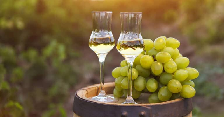 Grappa wine and grapes on the side